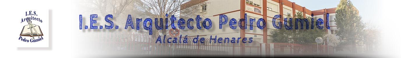 I.E.S. Arquitecto Pedro Gumiel